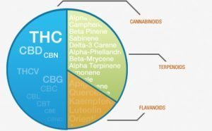 image of chemical compounds in cannabis